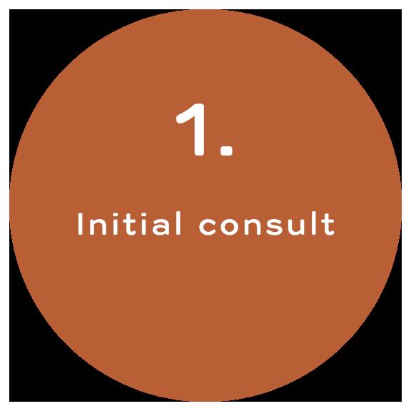 Initial Consult
